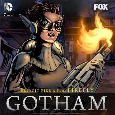Gotham-Firefly-Facebook-graphic[1]